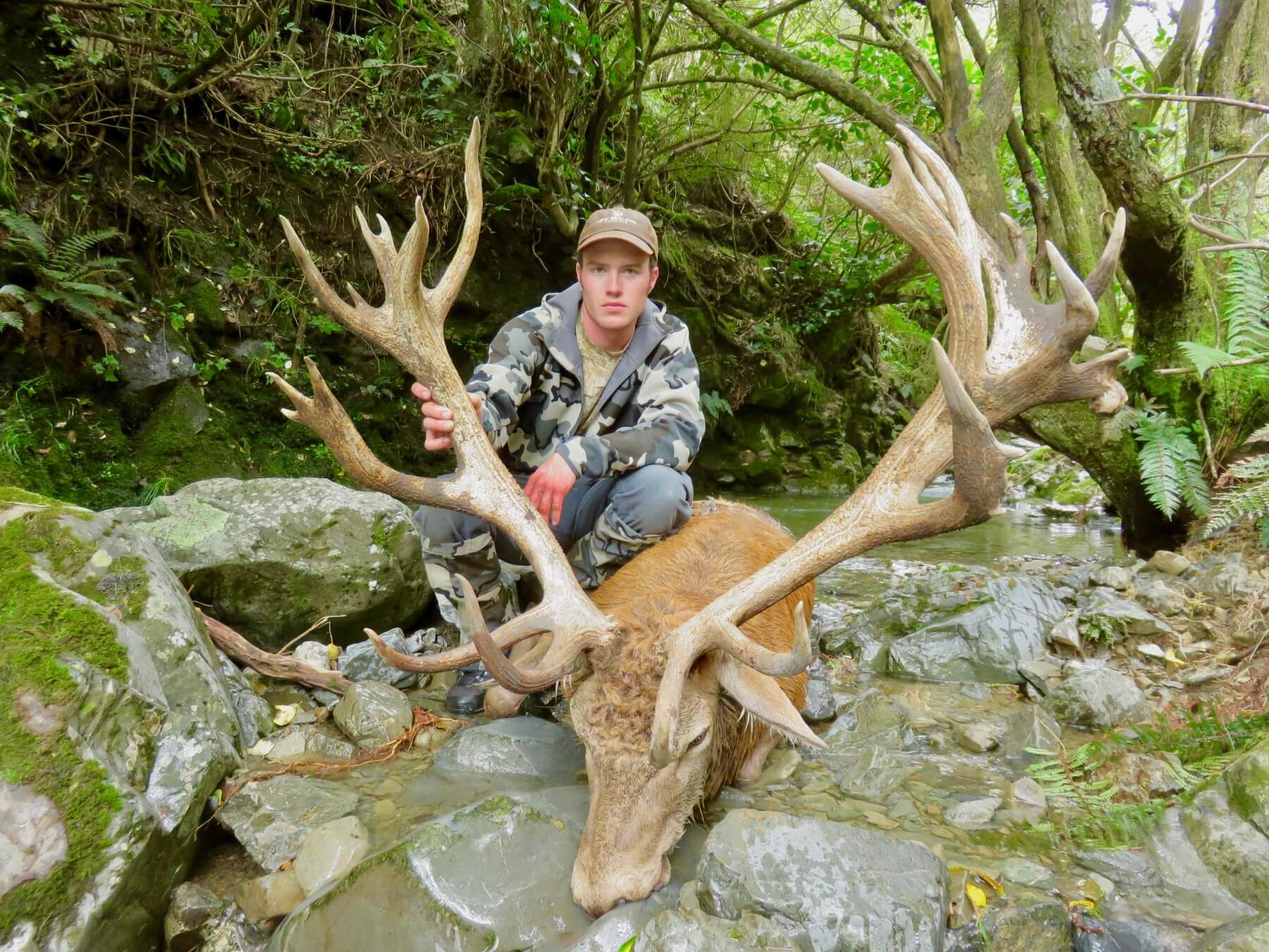 363 inch New Zealand Red Stag hunting trophy