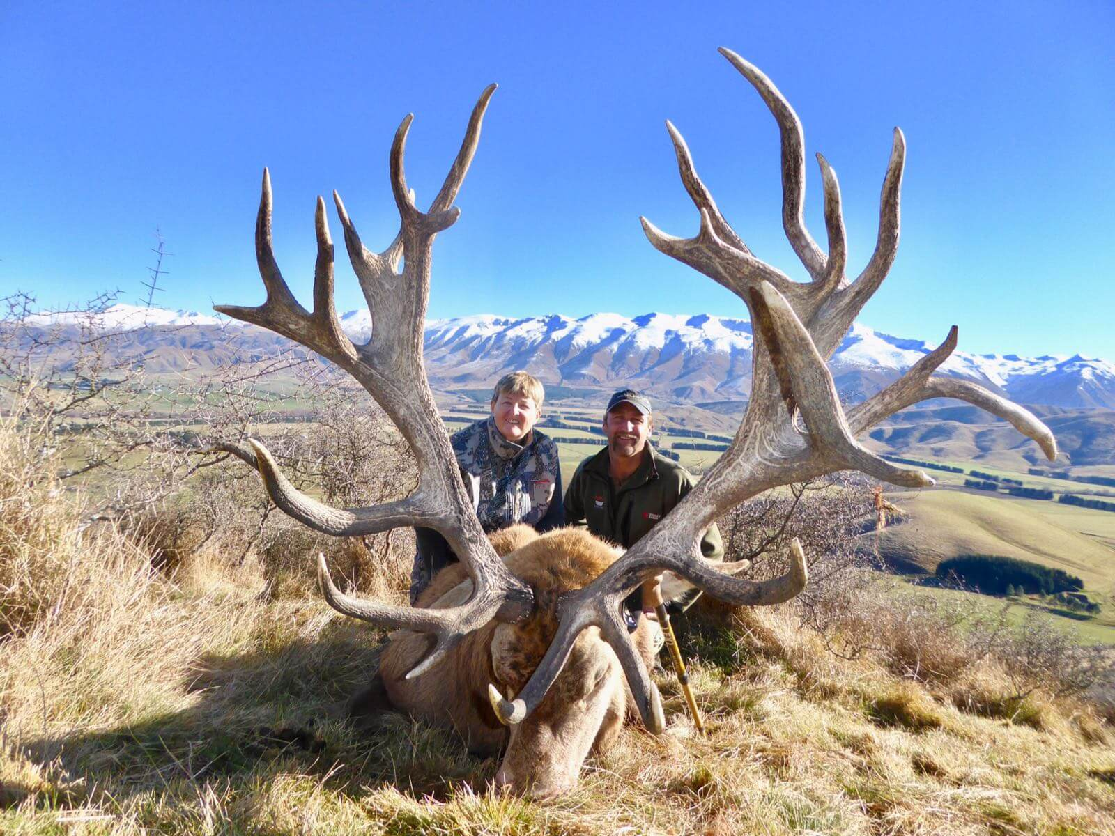 417 inch new zealand hunting trophy Red Stag