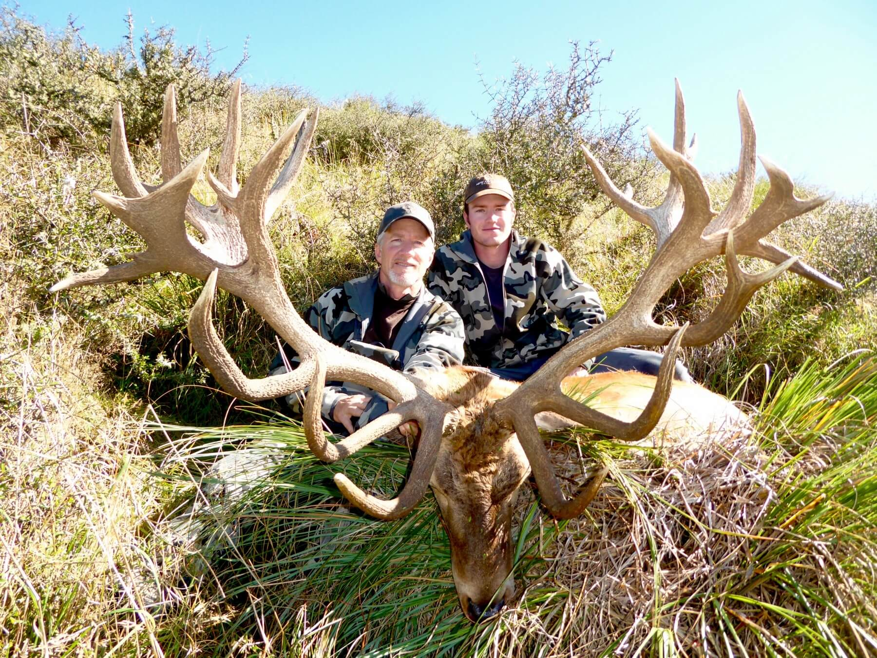 467 inch New Zealand Red Stag hunting trophy