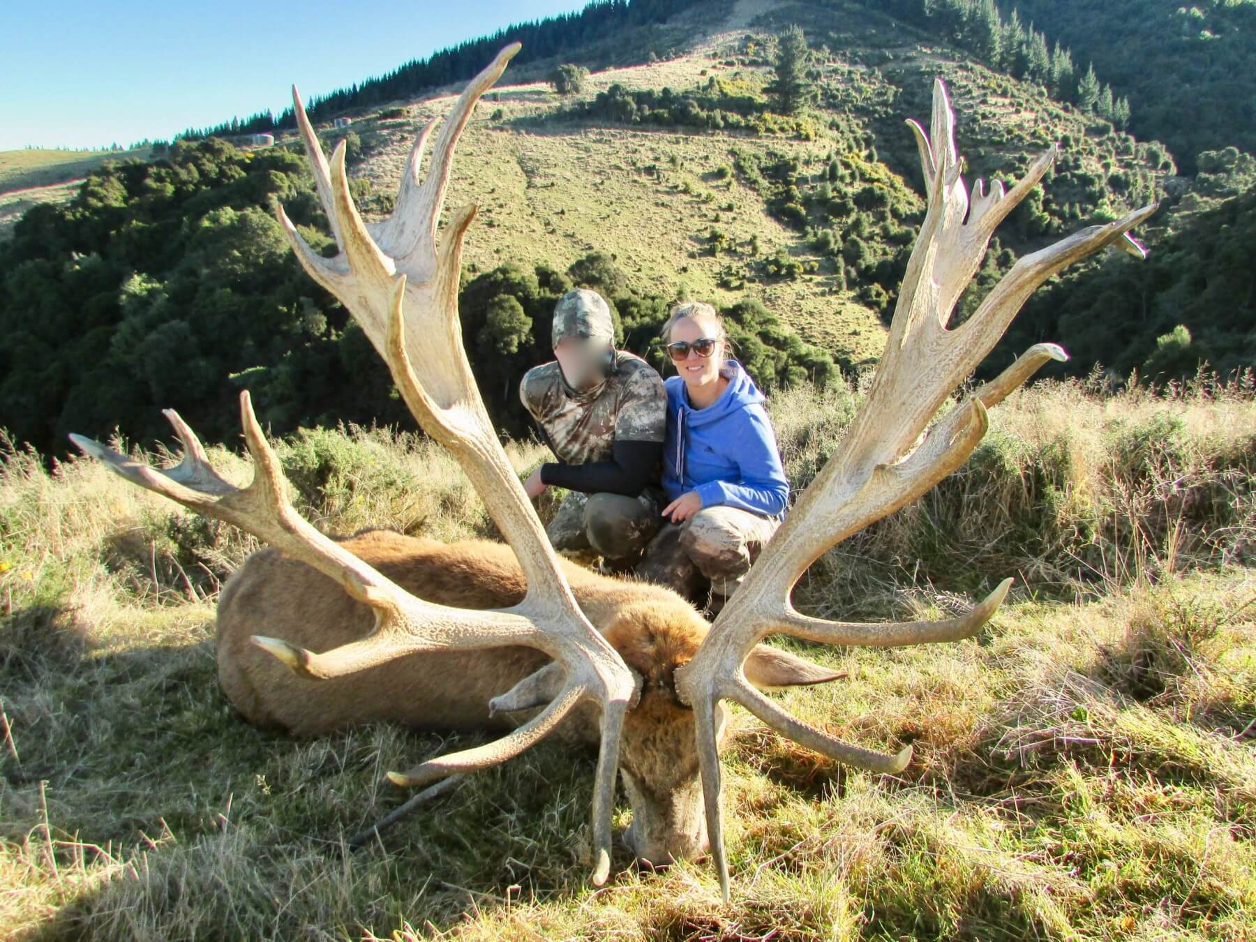 488 inch Red Stag