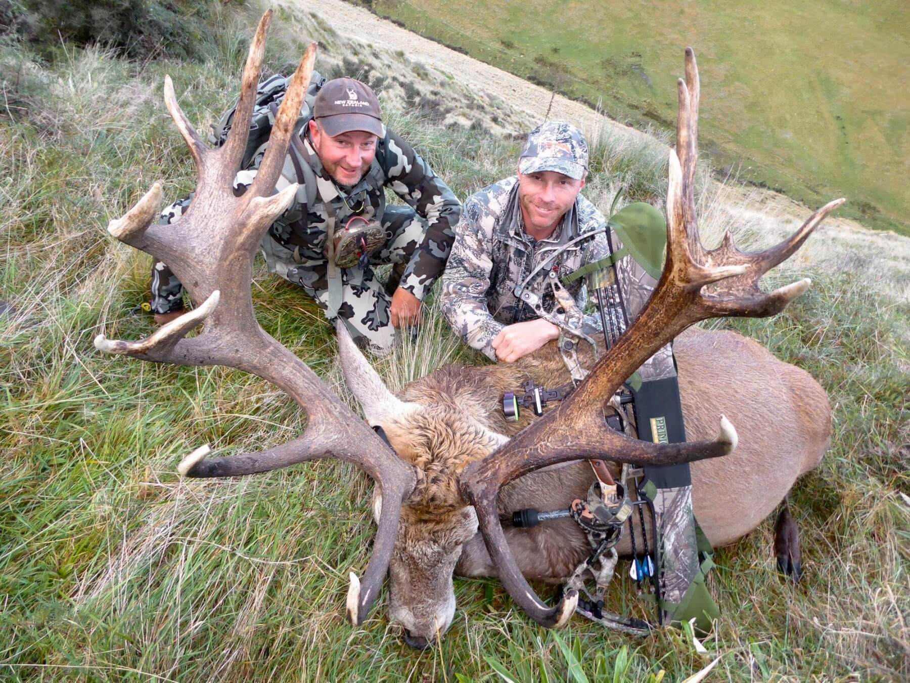 Bow hunting red stag