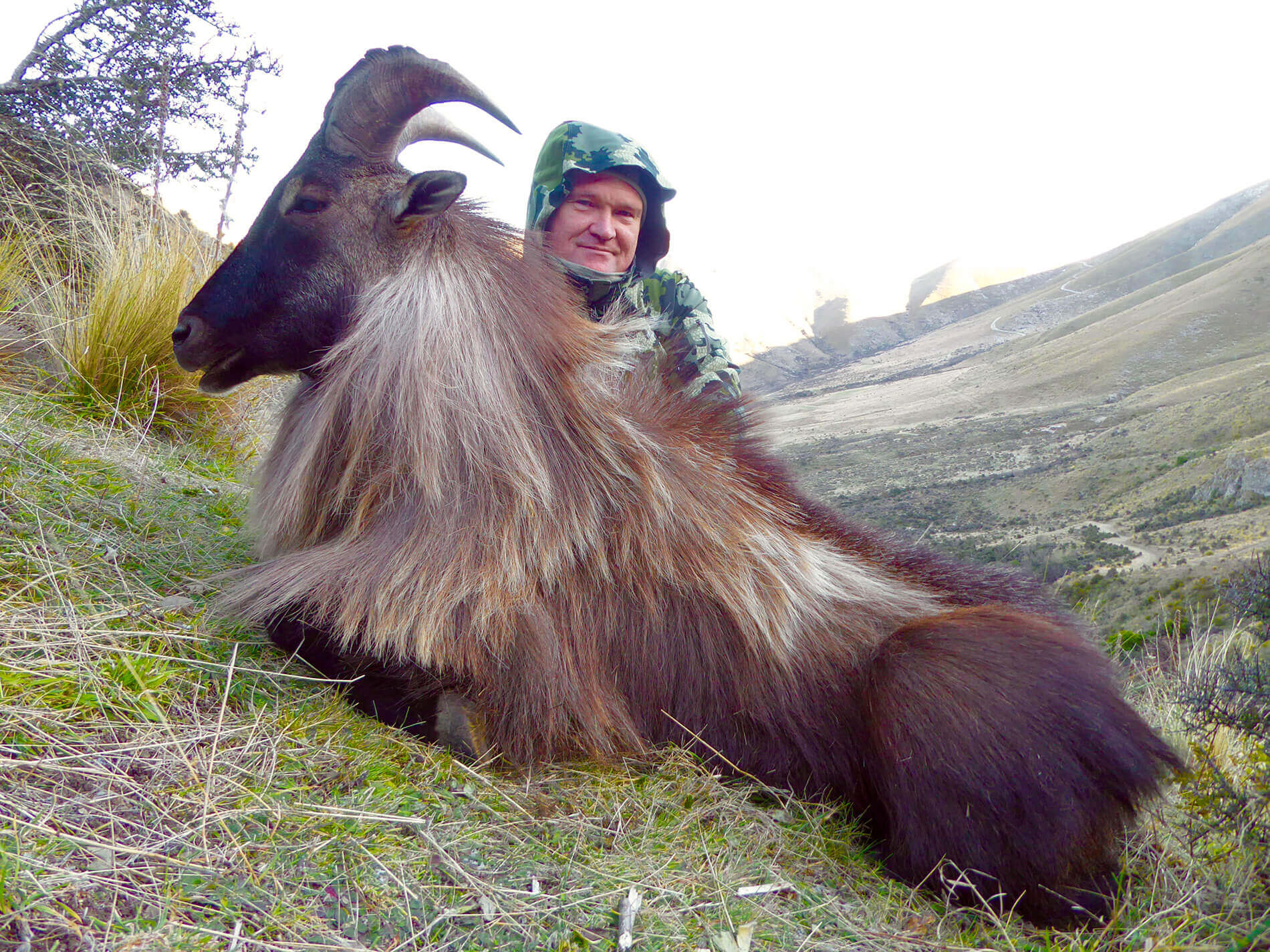 hunter with tahr trophy new zealand