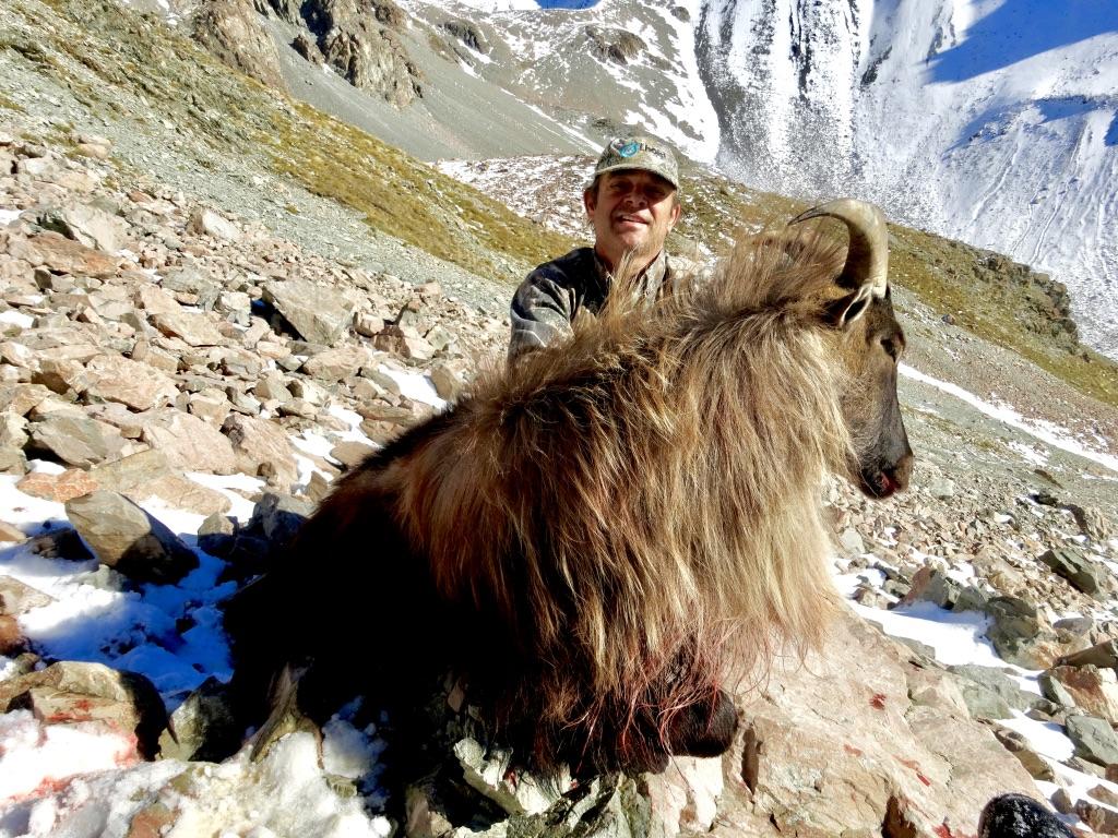Bull Tahr 9 year old foot hunt