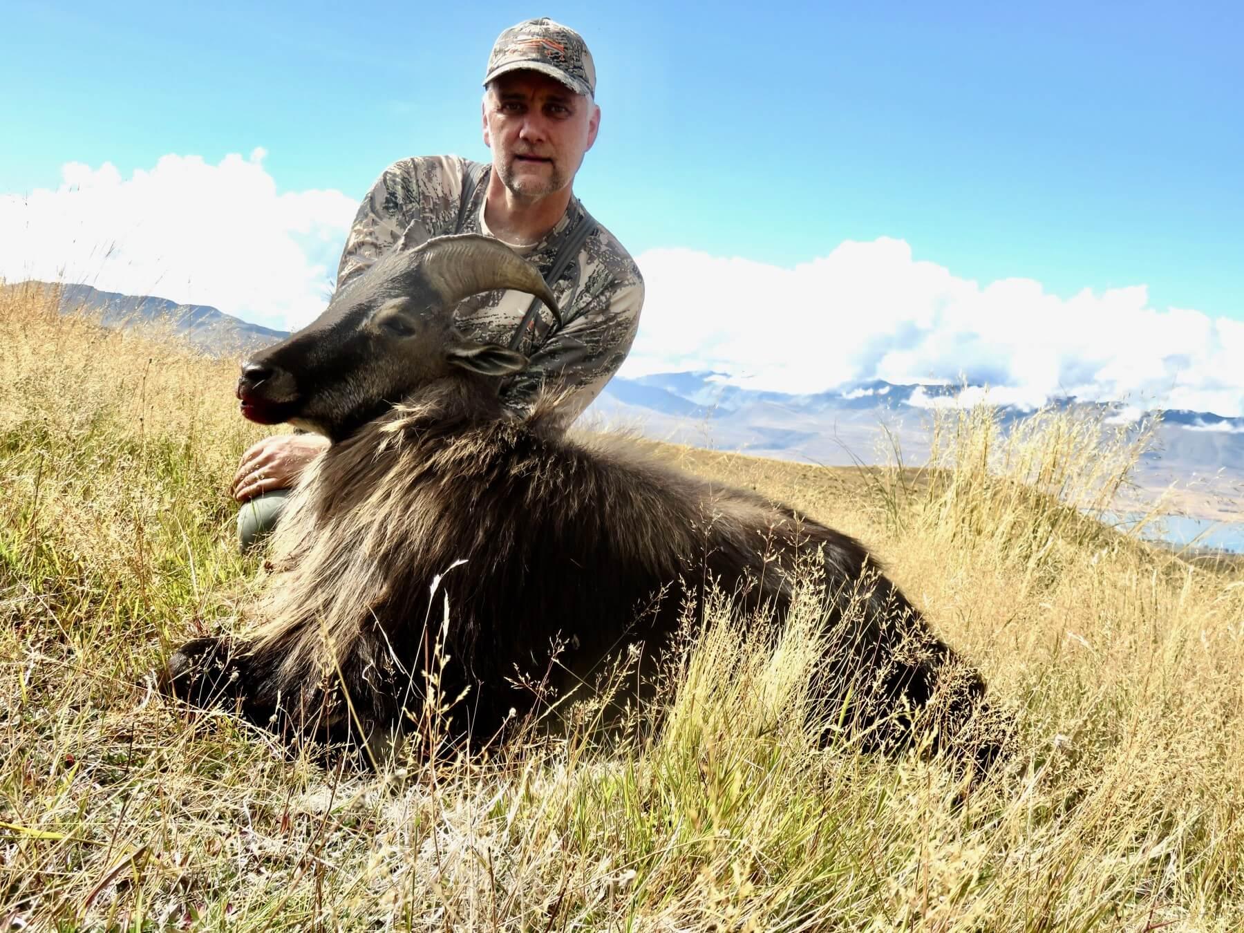 Bull Tahr ~ New Zealand Safaris