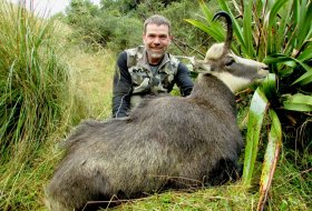 Chamois Hunting New Zealand, Private land 9 inches