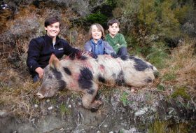 kids with wild boar new zealand