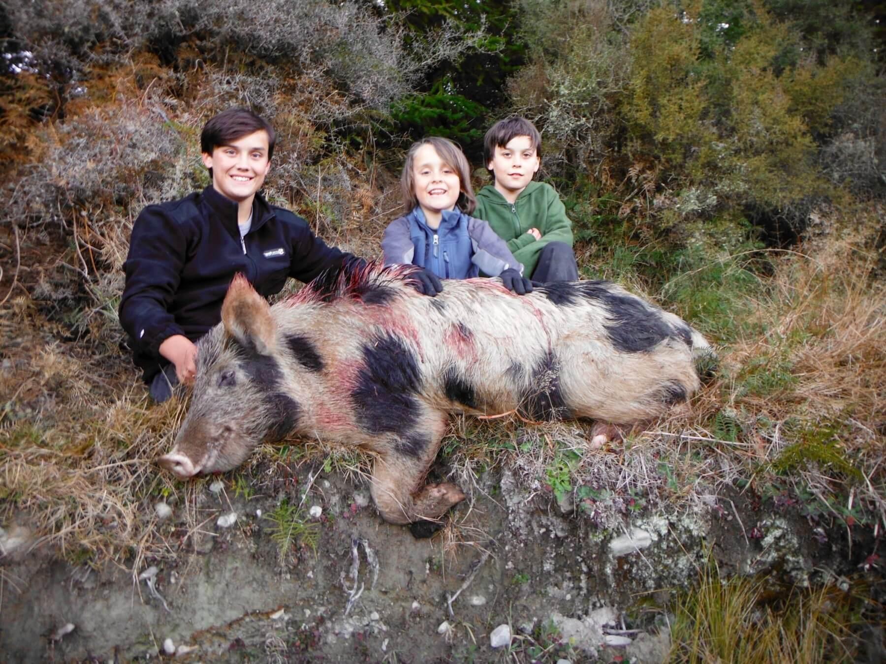Boar Hunting · New Zealand Safaris