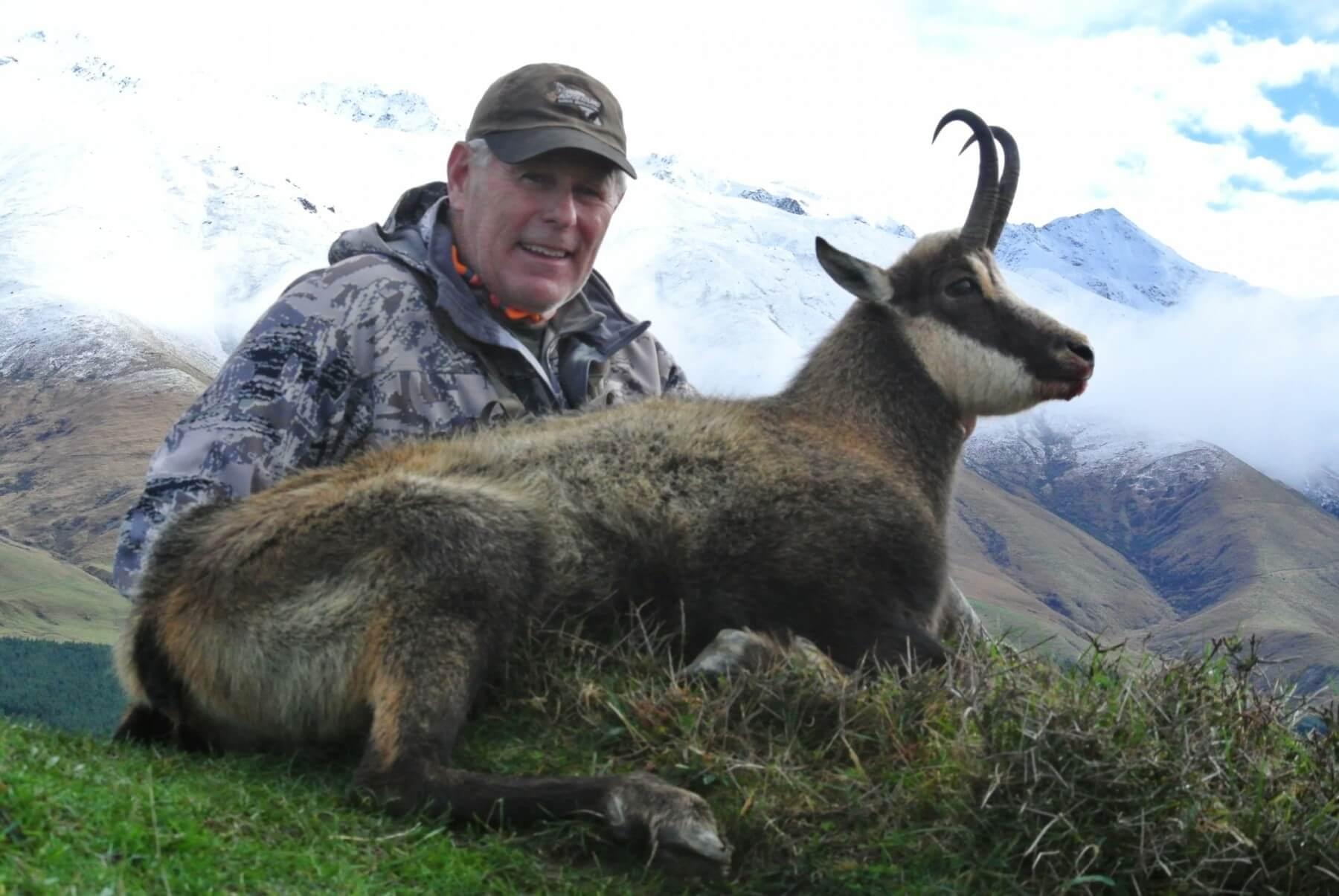 Free Range Chamois Close Up with Hunter