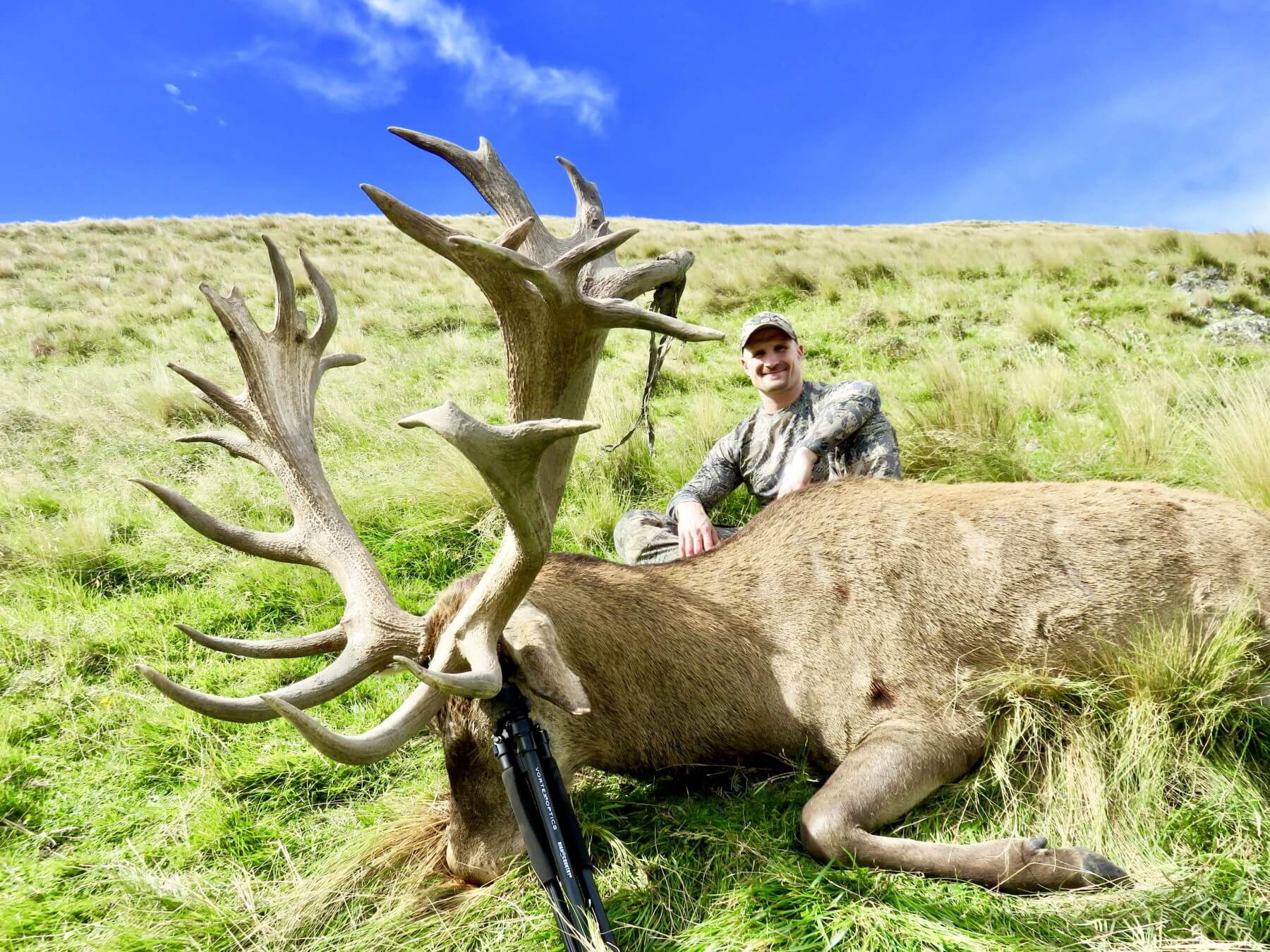 423 inch New Zealand Red Stag hunting trophy