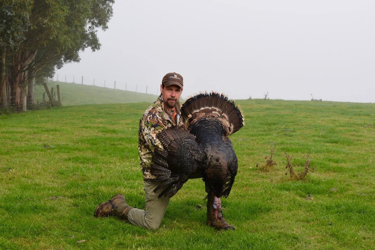 NZ turkey hunting trophy