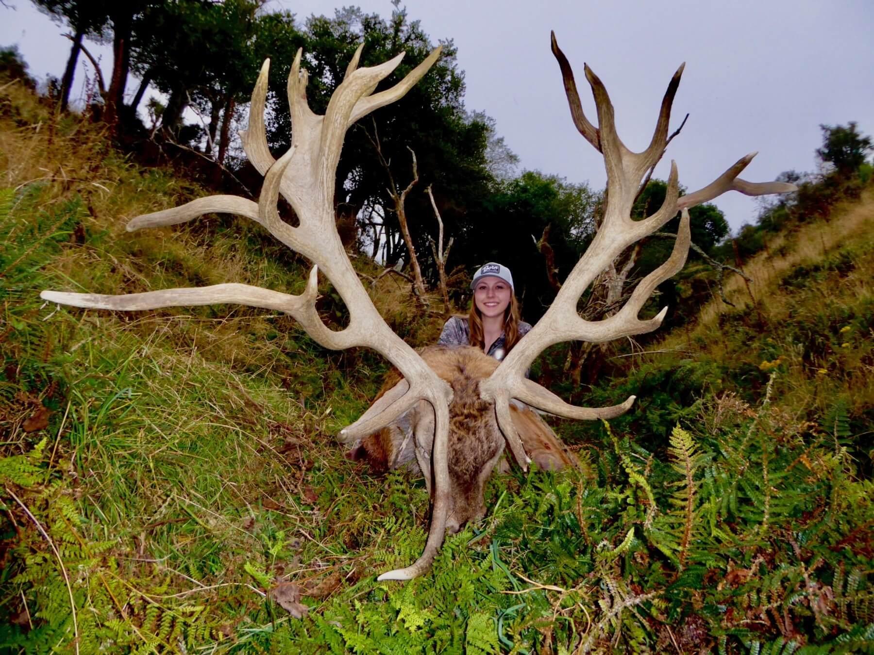 New Zealand deer 425 inches