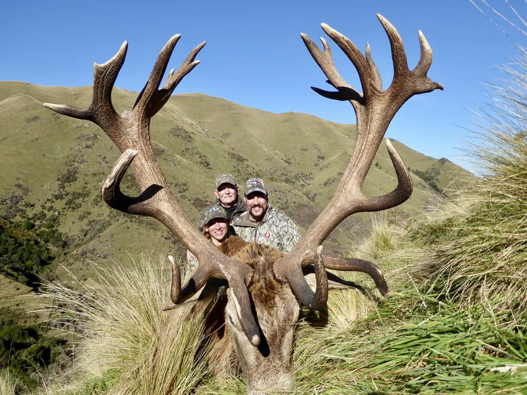 Non typical New Zealand Red Stag