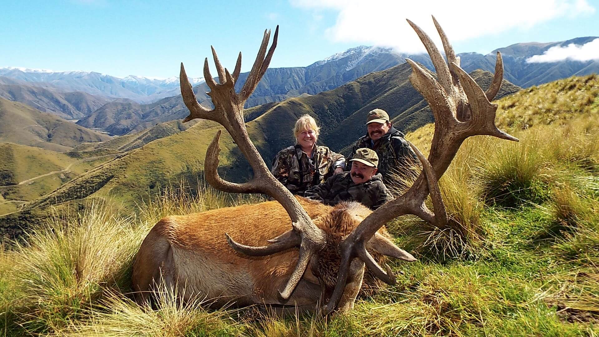 Red Stag hunting trophy with beautiful scenery