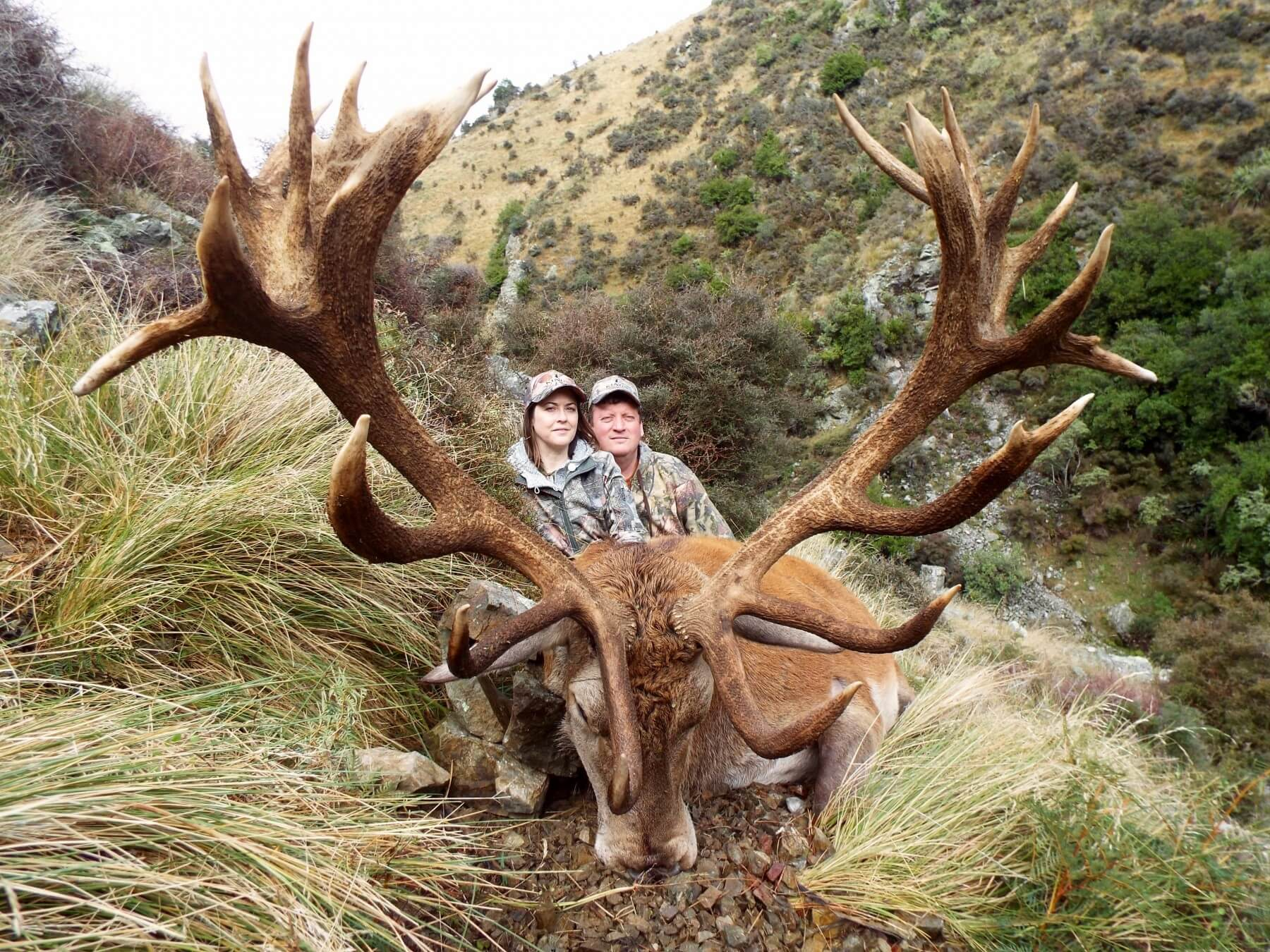 Red Stag 388 inches