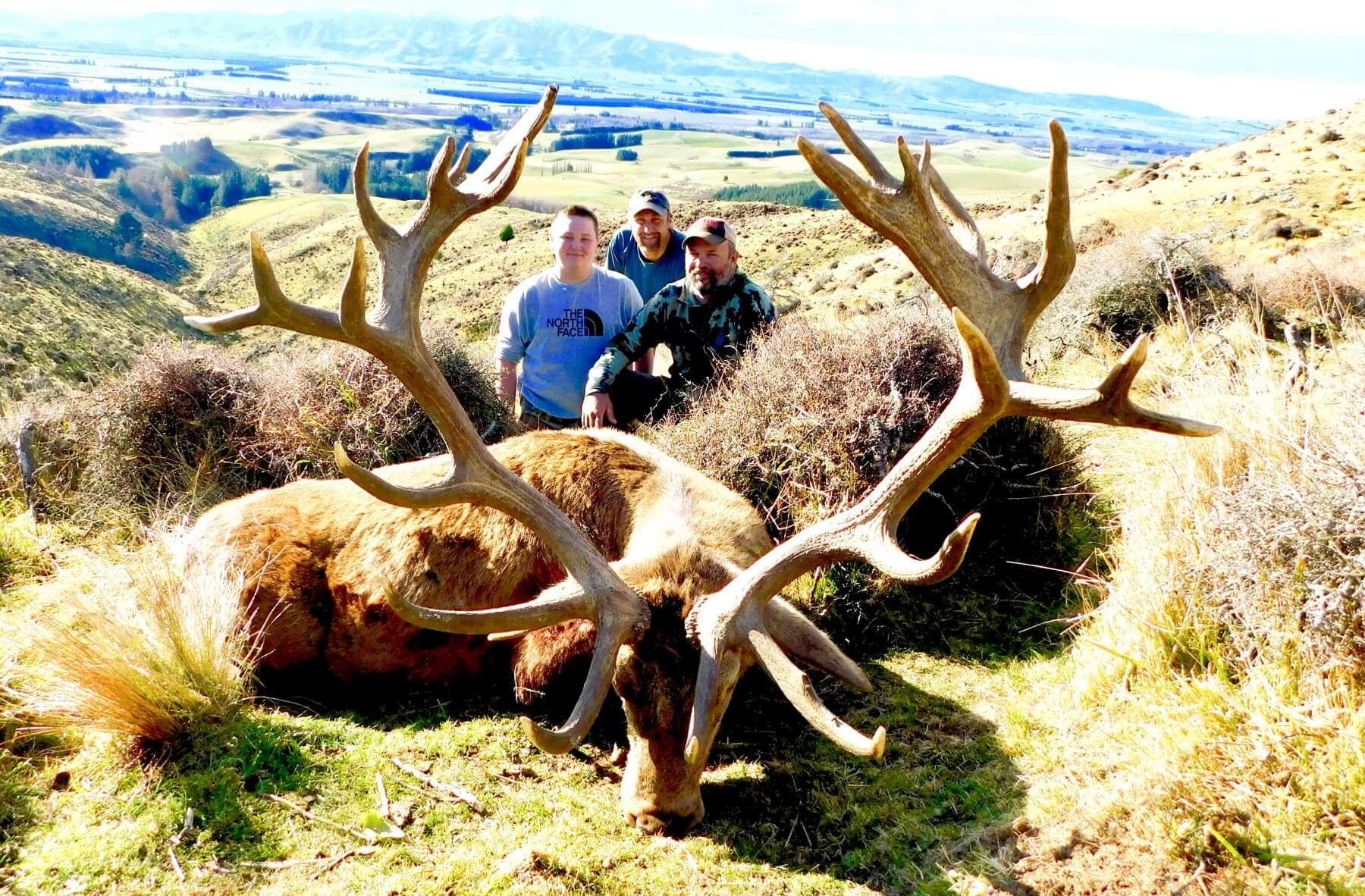 Red Stag HuntingOutfitters 378 Inches