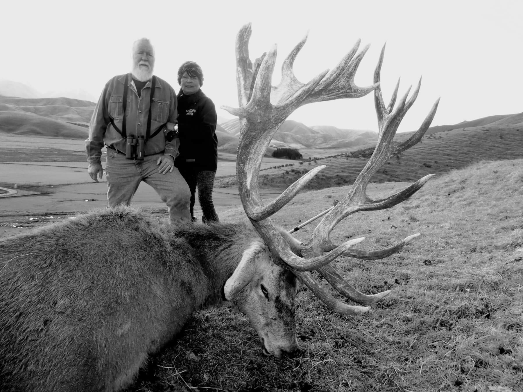 Red Stag Outfitters 371 inches
