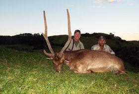 New Zealand Safaris Rusa deer hunting trophy