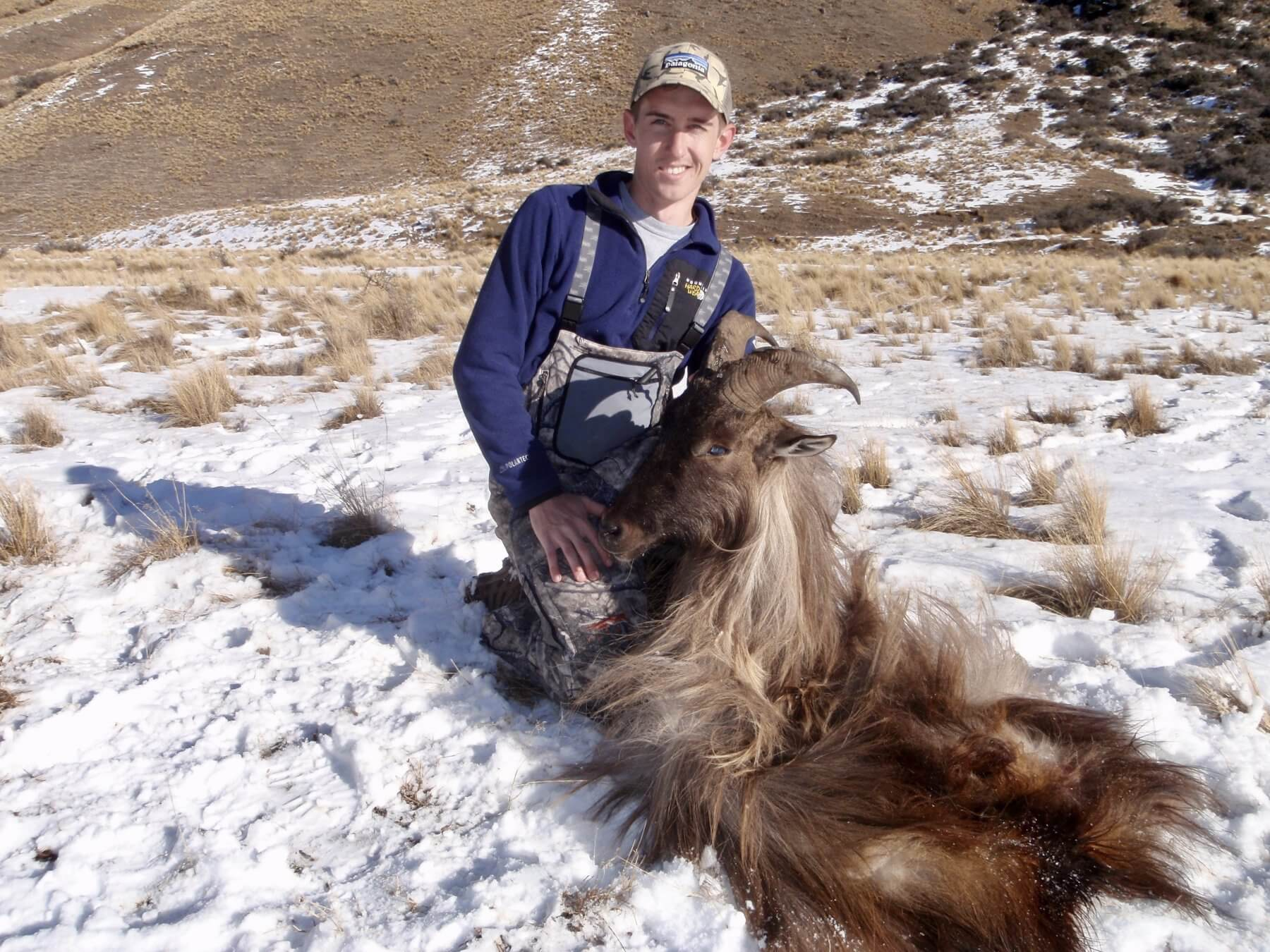 Tahr hunts 7 yr old 12 inch Bull