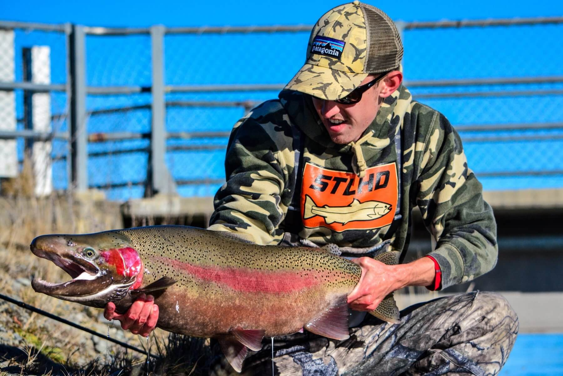 Trophy trout 25 lbs new zealand