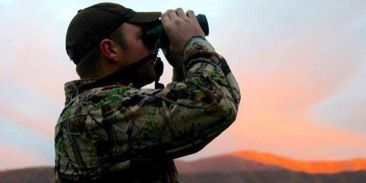 Hunter spotting in New Zealand