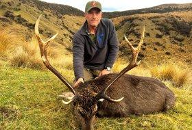 free range sika deer new zealand